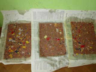 Radionice recikliranja papira u Voćinu, Orahovici i našem vrtiću