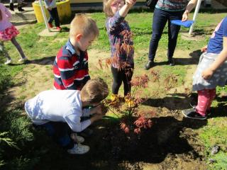 Sadnja eko-vrtova Pitomača